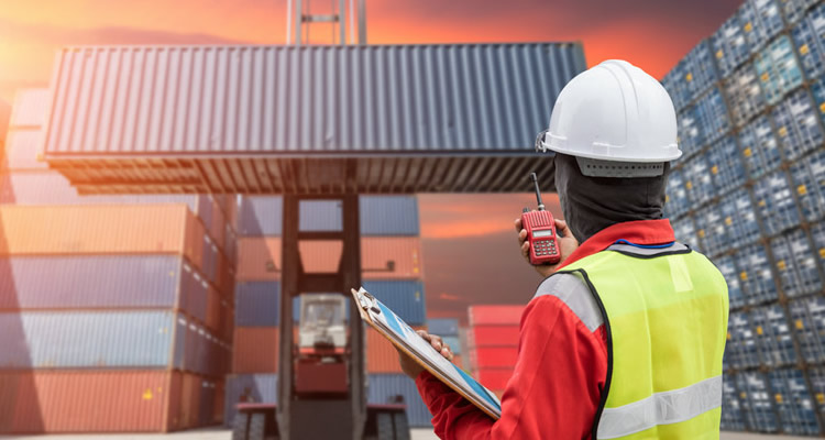 What is the Timeline for Canadian Customs Clearance?